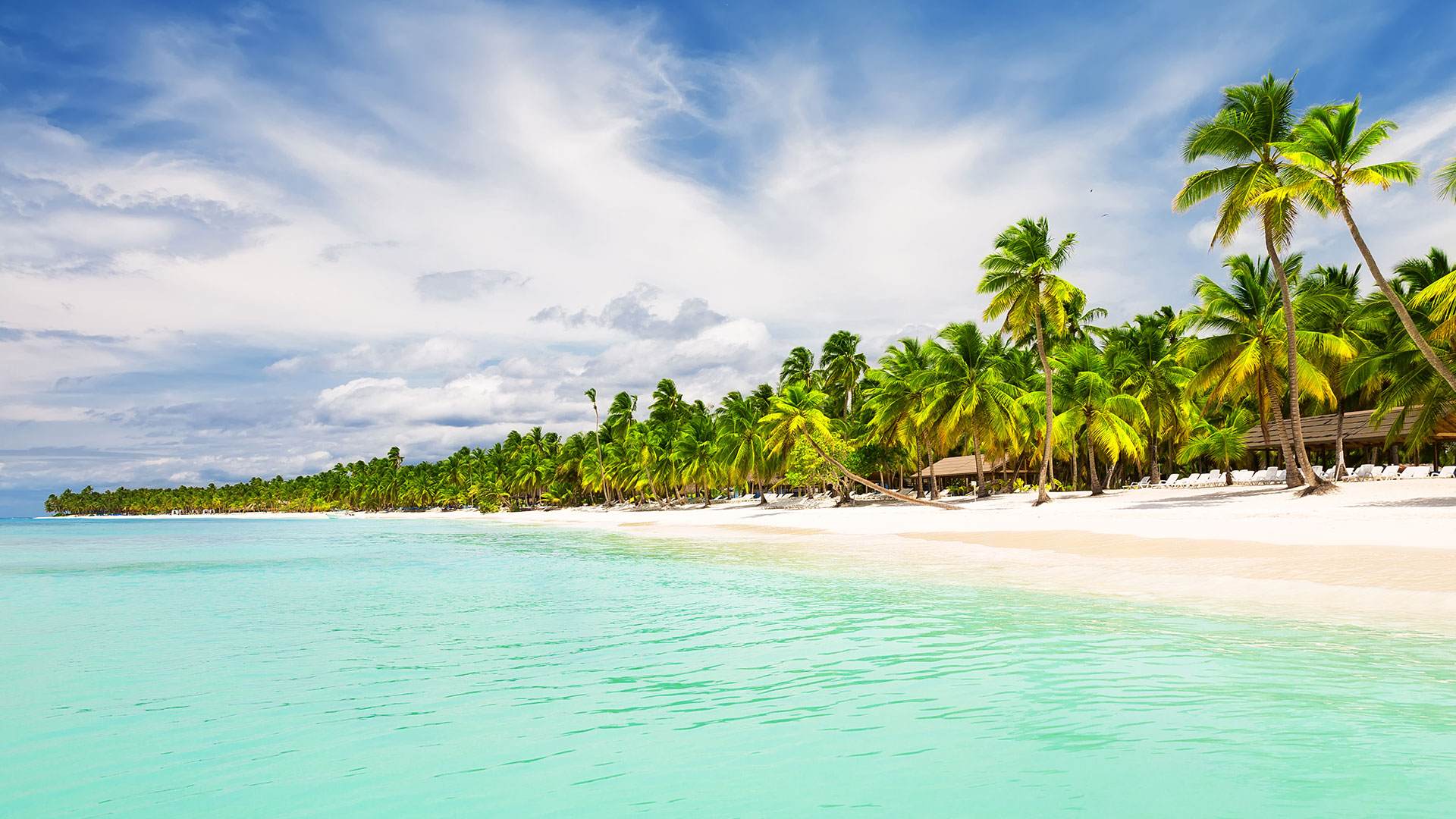 travel deals from miami to punta cana